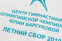 Футболки с логотипом и надписью «Центр гимнастики олимпийской чемпионки Юлии Барсуковой»