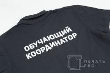 Футболки-поло с изображением и надписью «ОБУЧАЮЩИЙ КООРДИНАТОР»