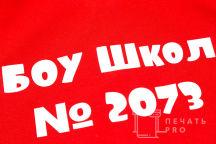 Футболки-поло с логотипом «ШКОЛА 2073»